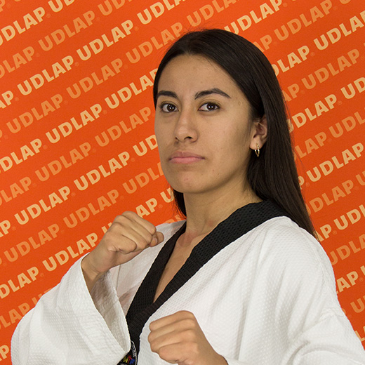 https://tkd.udlap.mx/wp-content/uploads/2018/09/155884.jpg